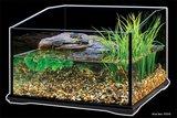 Exo Terra Schildpad Aquarium Klein_