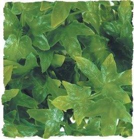 Zoo Med kunst planten Large Congo Ivy 56 cm