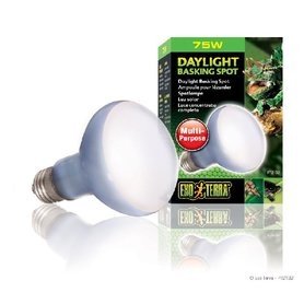 Exo Terra Basking Spot Lamp 75 Watt
