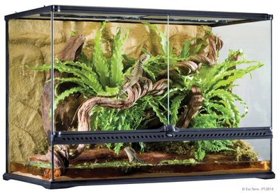 Exo Terra Natural Terrarium Large Tall
