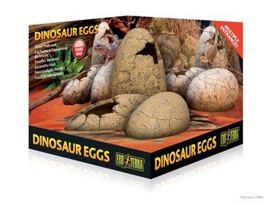 Exo Terra Dinosaurus eieren schuilplaats