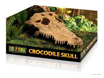 Exo Terra Krokodillen schuilplaats