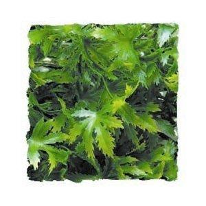 Zoo Med Kunst Planten Medium Cannabis 46 cm