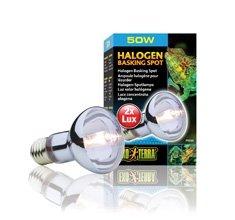 Exo Terra Sun Glo Halogen Lamp 50 Watt