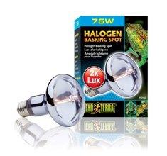 Exo Terra Sun Glo Halogen Lamp 75 Watt
